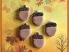 acorns-img_4450