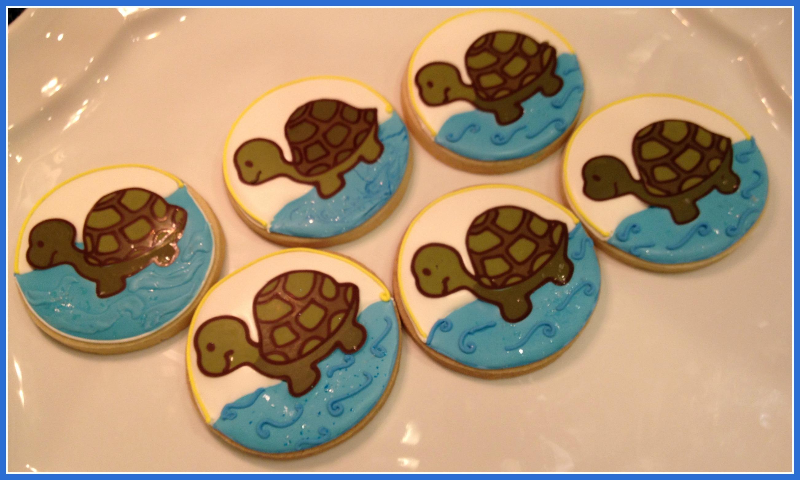 turtles-closeup