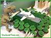 dinosaur-cake-and-plane-1