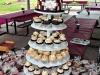 cake & cupcake tower IMG_6050l
