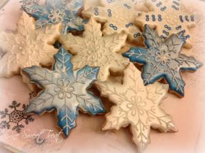 snowflakes IMG_7762