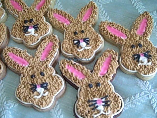 bunny-faces