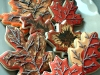 fall-big-leaves-2011