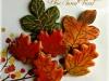 leavesIMG_6902 1 L