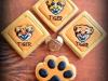 tiger IMG_3919 1